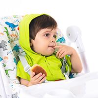 Cadeira de Refeição Appetito  Dino
